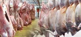 ضدعفونی کردن گوشت